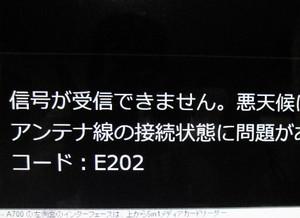 Neko_026