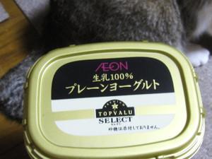 Neko_002
